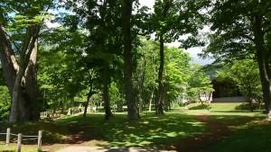 支笏湖10