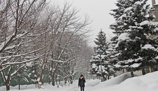札幌に移住して驚いたことと、違いを感じたこと18個